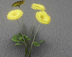 Low-Poly Dandelion Flower Version 5 - Object 11 3D model