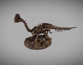 Dinosaur Fossil Statue 3D model