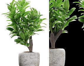 3D model plant 145