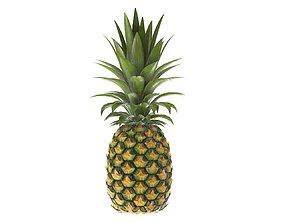 3D model PBR Pineapple