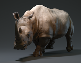 3D model VR / AR ready Rhino