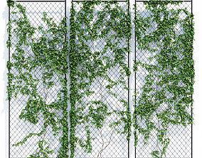 3D Ivy wall