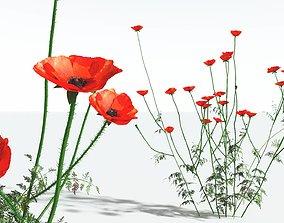 EVERYPlant Field Poppy 01 --20 Models-- 3D