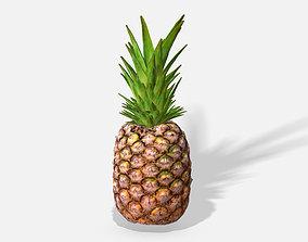Exotic Fruit Pineapple - Photoscanned PBR 3D asset