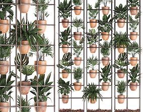 3D model Plants collection Vertical gardening 30