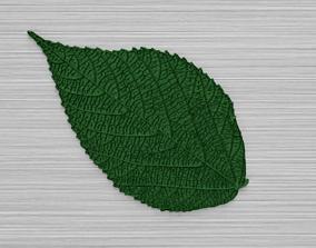 Green Leaf 3 3D