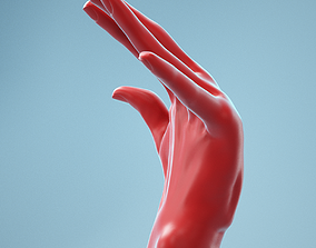 3D Bent Back Realistic Hand Model 12