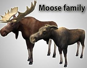 Moose family 3D model