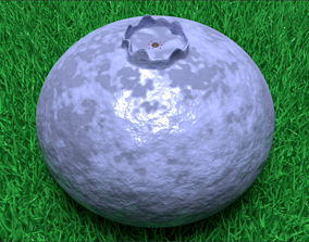 3D model game-ready Blueberry