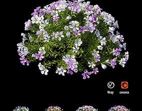 3D nature Plant flower set 10