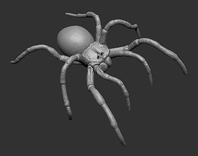 Tarantula Spider 3D print model