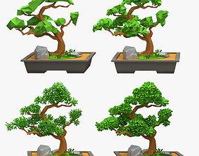 Bonsai Low Poly Style 3D asset