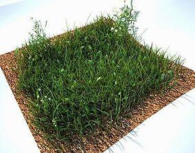 Grass Kit V2 for CInema 4D and Vray 3D model