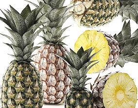 Pineapple Fruit Set 3D