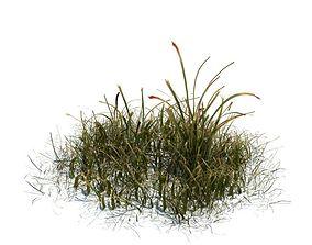 3D Model Simple Grass