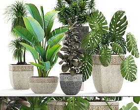 3D garden Collection plants