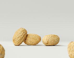 3D model Peanut 003