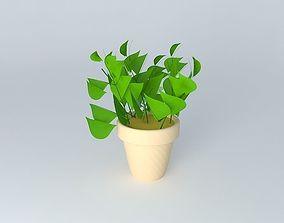 house plant 3D
