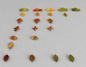 Dead Autumn Leaves 3D