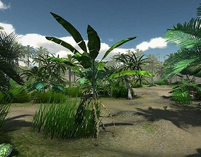 Tropical Models 3D asset