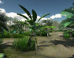 Tropical Models 3D asset