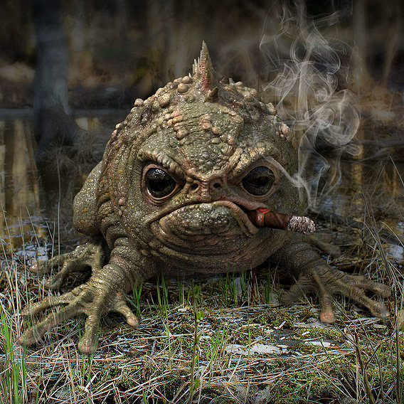 Old frog