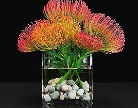 3D model Plant 13