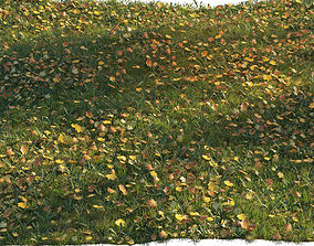 Grass with maple leaves 3D model