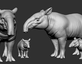 3D printable model Tapirus