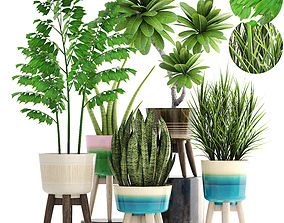 Collection plants 3D tropical