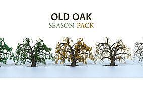 3D model Old oak season pack