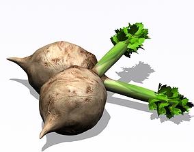 3D Celery fbx