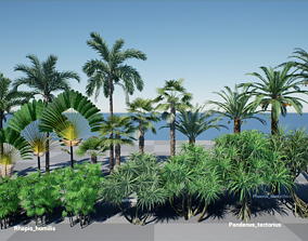 3D HQ Plants Volume 3 Palms for unreal engine 4