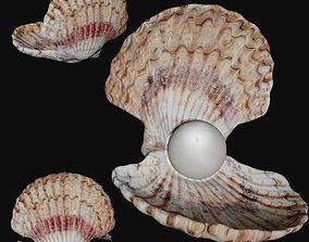 3D asset Clam shell