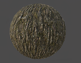 Tree Bark 003 Material 3D model