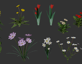 Flowers Pack 3D asset game-ready