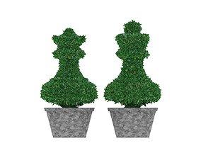 3D asset Bush plant - boxwood