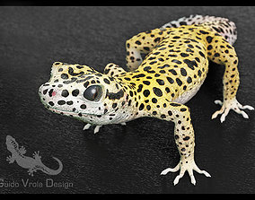 3D model Leopard Gecko