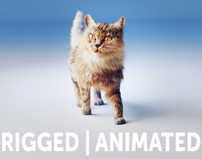 Rigged Cat Hyper Realistic model with animated