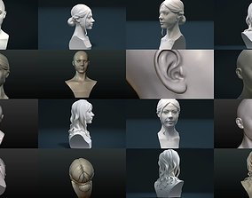 Woman heads and Hairstyles 3D