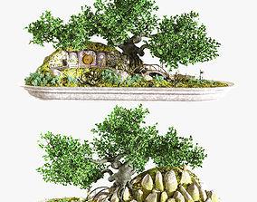 3D Bonsai style Hobbit