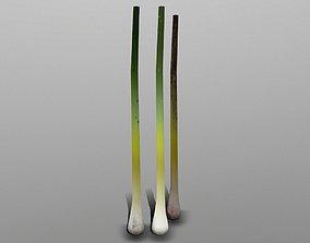3D asset Green Onion