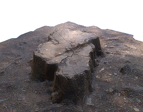 Ground Tree Stump 3D model