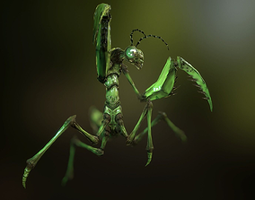 Praying Mantis 3D asset