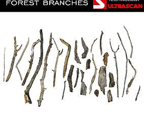 3D asset Wood Branch Pack 28