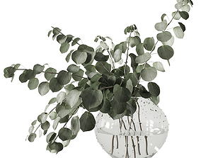 3D model Eucalyptus bouquet