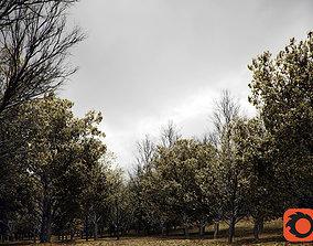 HeliosVegetation vol1 Autumn - leafless tree pack 3D 1