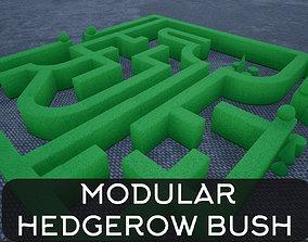 3D asset Modular Hedgerow Bush