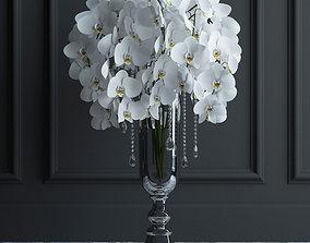 3D model Orchid bouquet