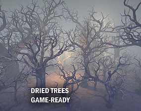 Dried trees 3D asset